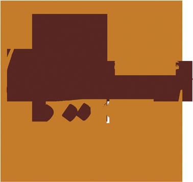 گروه حقوقی ستاره ایوبی
